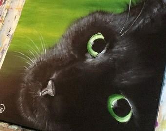 Canvas Print of a black cat