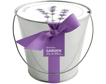 Lavender Pail – Self Contained Grow Kit – Eco Friendly – Patio Garden – Fragrant Flowers – Kitchen Garden - Indoor Garden – Mother's Day