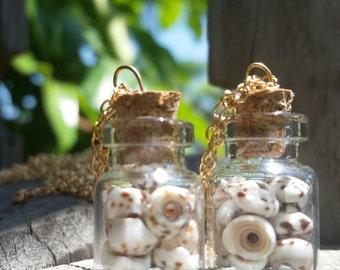 shell mini jar necklaces