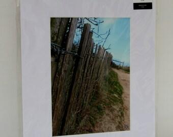 Fence along a beach: Mounted photo