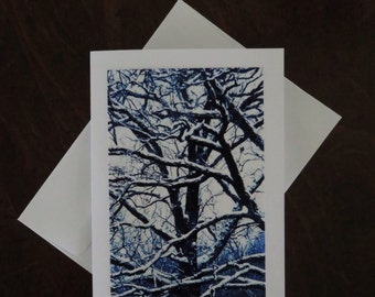 Snowy Tree Branches.  Photo Greeting/Note Card. Blank inside.