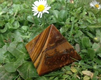 Tiger's Eye Gold Pyramid