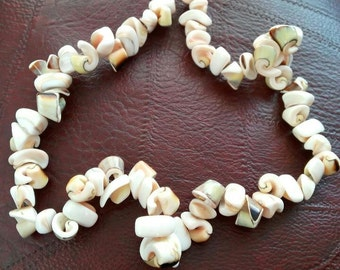 Necklace of shells