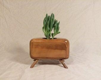 The Modbaby ( Succulent Planter )