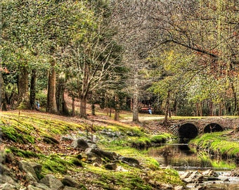 Timrod Park, Stream, Cobblestone Bridge, Peaceful, Trees, Greens, Wall Art, Photography, Landscape Photography