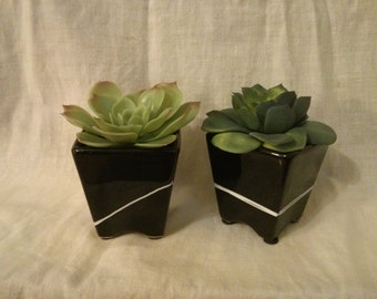 Faux Succulents in Minimalist Pot