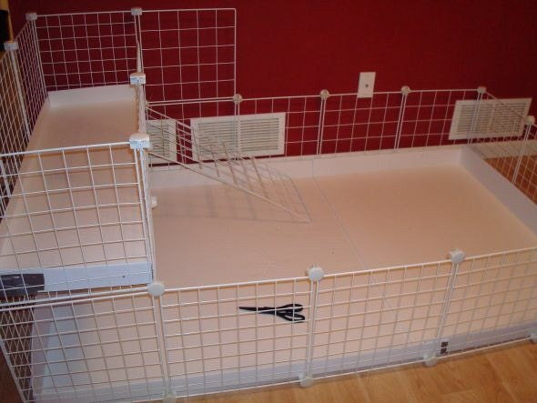 Guinea pig cage extra 14 x 14 white wire grid for Wire guinea pig cages