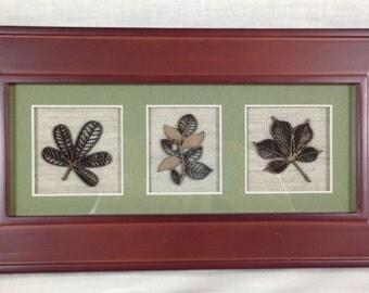 Framed Trio of Leaves