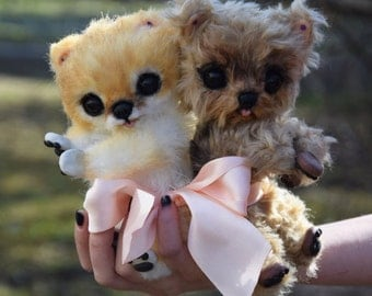 Yorkshire Terrier and Pomeranian