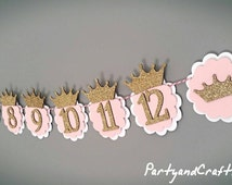 12month photo banner, princess photo garland, monthly photo bunting, photo display, First Birthday, first birthday gift, personalize bunting