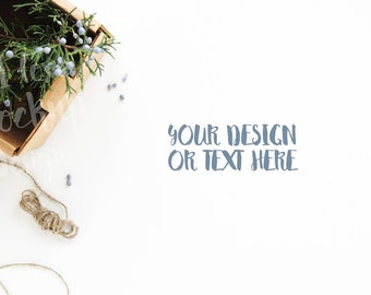 Juniper Branches in a Box on a White Desktop / Stock Photography / Product Mockup / High Res File