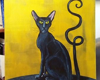 Black cat (black cat)