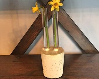 Concrete Test Tube Vase