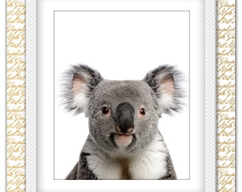 Koala Print, Koala Art, Koala Wall art, Koala Bear Wall Decor, Koala poster, Koala photo, Animal Printable, Bear Wall art, Australian Animal