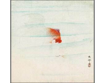 Goldfish Digital Print - Vintage Fish Print - Goldfish Print - Japanese Print - Watercolor Print - Koson - Digital Print - Digital Download