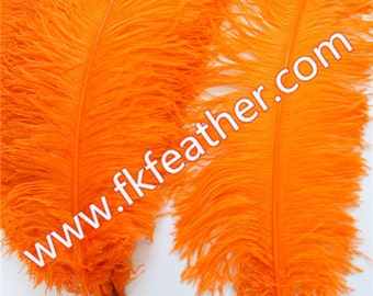 "26""- 28"" Ostrich Feather"