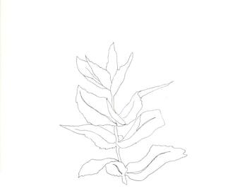 summer mint // ORIGINAL ART // 9x12 original line drawing