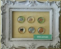 Glass pebble magnets, Wild animals