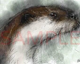 Otter - A3 print