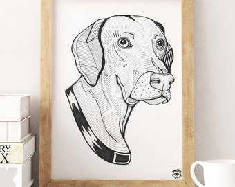 Weimaraner Dog A4 A5 illustration, print, art, dog print, dog drawing, weimaraner illustration, weimaraner drawing
