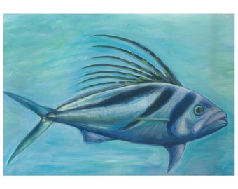 Rooster fish / fish gallo