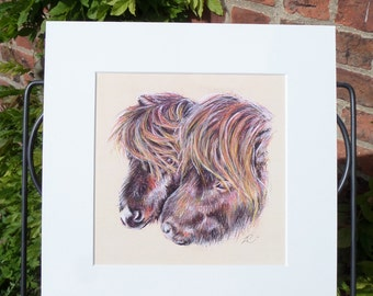 "12""x12"" Mounted Print of a soft colour pencil and pastel drawing of two Shetland Ponies"