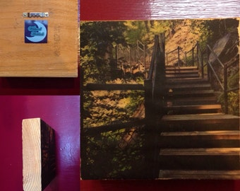 Stairs Toketee, OR - WOOD TRANSFER