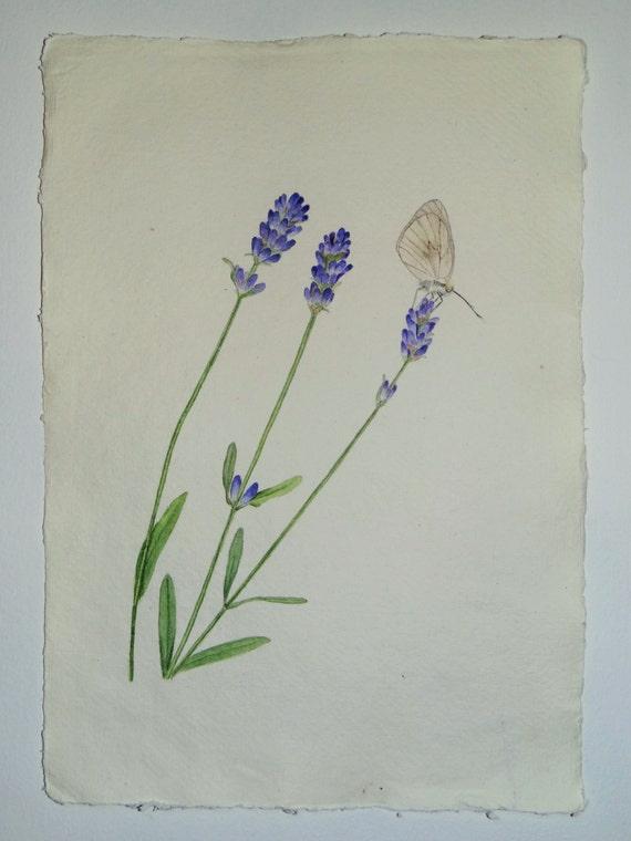 Original Watercolor Lavender Butterfly Painting, Lavender Painting, Lavender Wall Art