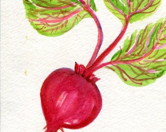 Beet watercolor painting original,  vegetable series, 4 x 6, beet art