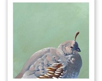 The Patron Saint of Breakfast Burritos 8 x 8 Art Print - Bird - Animal - Nature - Quail - Mincing Mockingbird - Gift - Giclee