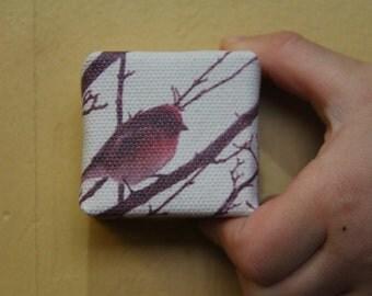 Purple Finch in Winter - Mini Canvas Print
