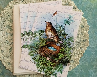 Vintage Woodthrush Nest Notecards - Bird and Nest Notecards - Flat Notecards, Nature Notecards, Blue Eggs - Set of 3 Notes with envelopes