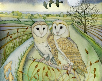 Single Greetings Card of an original painting: 'Barn Owls'.