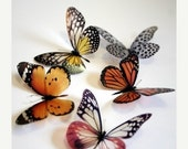 NEW YEAR SALE 100 x 3D Natural Transparent Butterflies for use in Decorating or as a Craft Supply