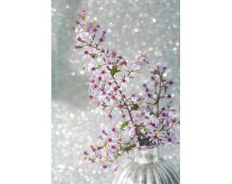 Floral Art Print, Aster Bouquet Photo, White Purple Wall Decor, Bedroom Decor, Flower Photography