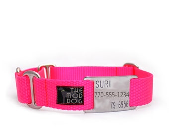 "3/4"" The Swan buckle or martingale dog collar with flat ID tag"