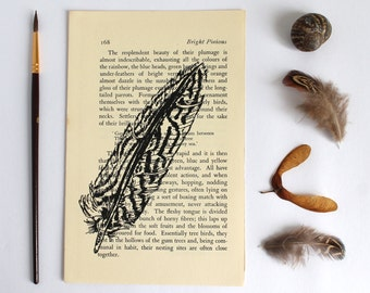 Feather Print Vintage Book Page from Bright Pinions
