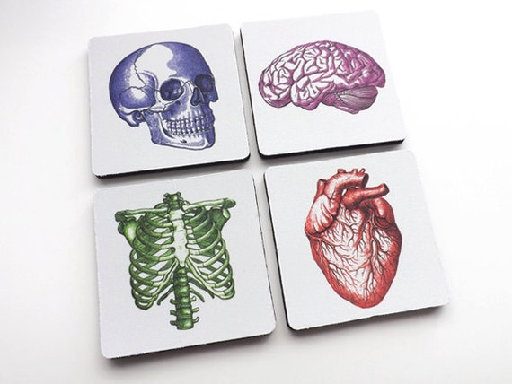 Medical Gift for Nurse Doctor anatomy drink coasters dorm room decor student anatomical heart physician assistant practitioner mug mat nerd