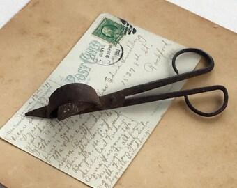 Antique Candle Snuffer Scissor Primitive Pre Civil War