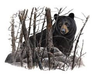 """BEAR, BLACK in Woods on One Large 18"""" x 22"""" Fat Quarter Fabric Panel to Quilt or Sew"""