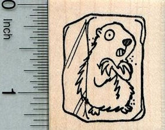 Items Similar To Groundhog Day Rubber Stamp, Woodchuck