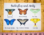 Sample Swatch for Butterfly and Moth Wing Costume Styles - 6 Styles Included: Monarch, Luna Moth and More