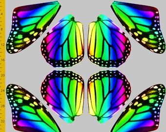 Medium Size Rainbow Monarch Butterfly Fabric to Make Costume Wings, 100% Cotton Woven