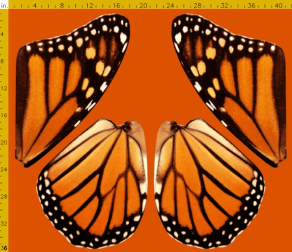 Orange Monarch Butterfly Fabric to Make Costume Wings 100%