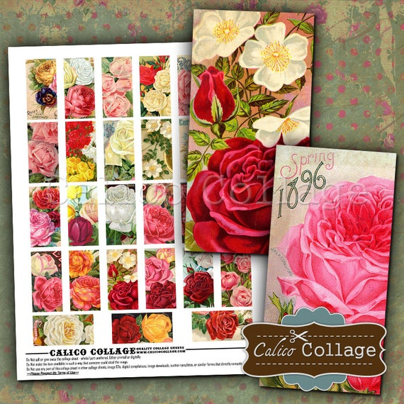 Floral Gems, Cottage Chic, Domino Collage Sheet, Collage Sheet, Digital Collage, 1x2 Domino Images, 1x2 Inch Domino, Domino Collage
