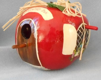 Hand Painted Apple Red  Bird House Gourd