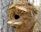 Outdoor Birdhouse, Rustic Mossy bird house with driftwood and Forest Finds
