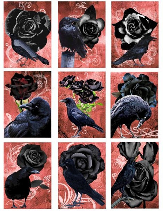crows black roses digital download collage sheet scrapbooking graphics images printable lables aceo atc tags cards paper craft supplies