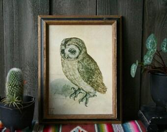 Vintage Owl Print in Gold Frame Printed in 1960s Clasic Work From 1851 Albrecht Durer Vintage From Nowvintage on Etsy
