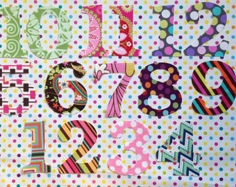 Baby's First Year - Set Of 12 Monthly DIY Fabric Iron On Appliqués - Monthly Baby Photo Girls